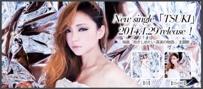 2014_official_website_tsuki