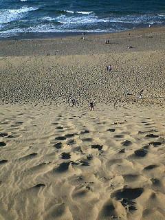 ついでに砂丘